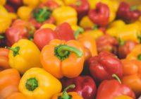 Jak bojovat proti chorobám napadající plodovou zeleninu