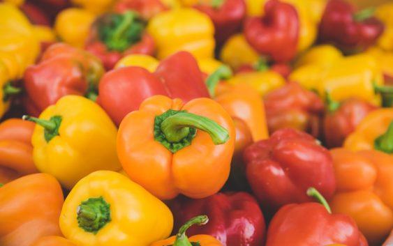 Choroby napadající zeleninu