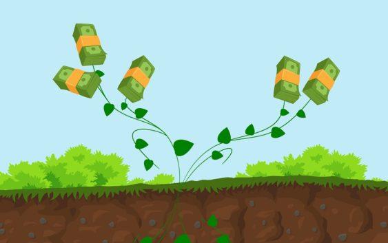 Měď, platina, zlato nebo surová ropa. Jak dnes vypadá trh s investicemi?